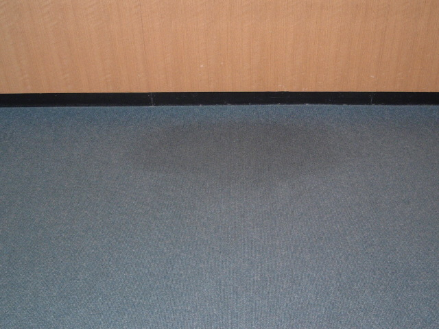 Bloomfield Public Library commercial carpet cleaning before