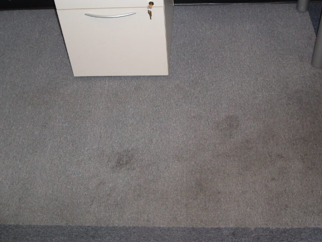 Machine Shop in Rochester, N.Y carpet cleaning before
